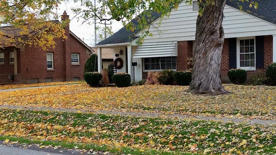 A Typical Fall Cleanup - Before